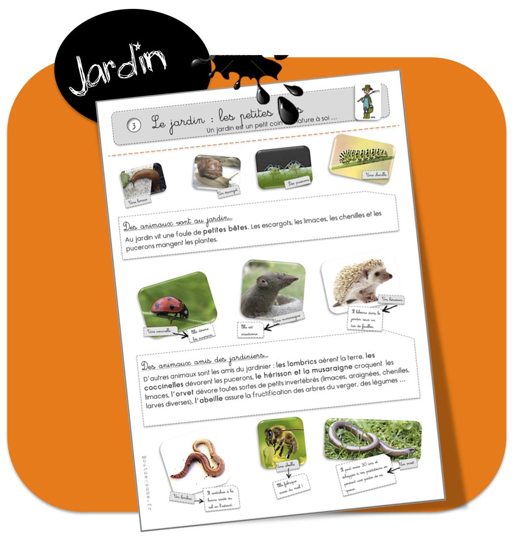Top Les petites bêtes du jardin | Bout de Gomme MY81