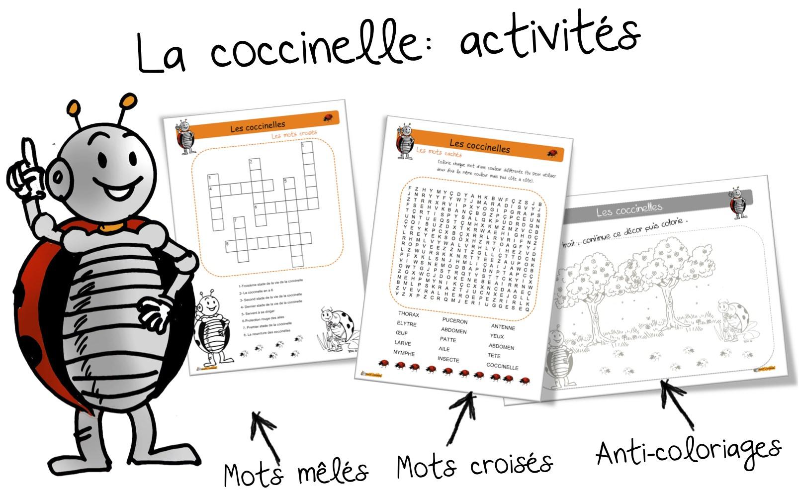 Souvent Les coccinelles : les activités | Bout de Gomme UZ54