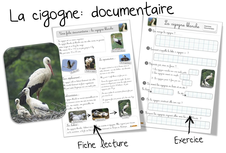 Documentaires bout de gomme page 3 - Fiche de lecture effroyables jardins ...